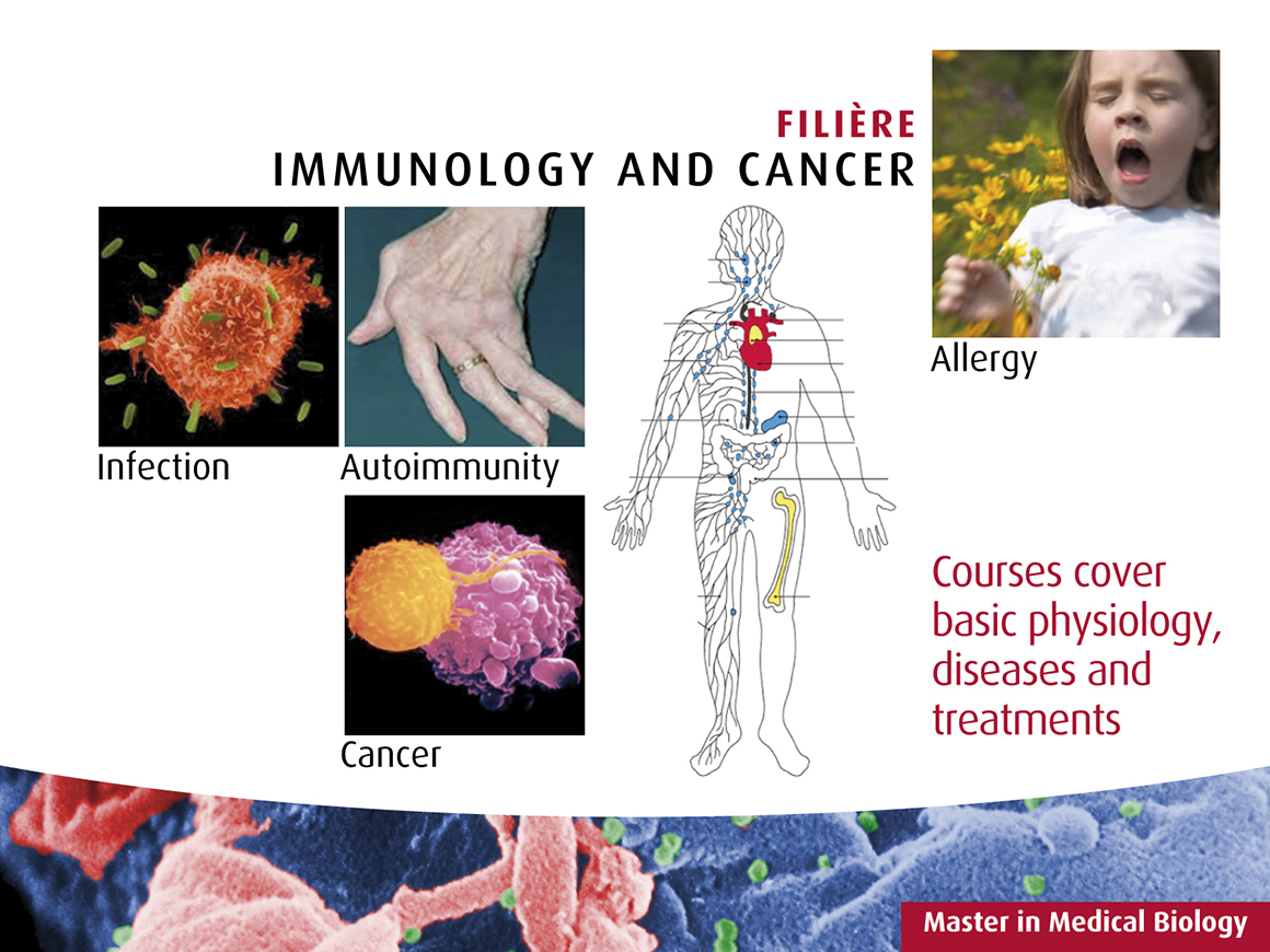 présentation slideshow immunologie et cancer