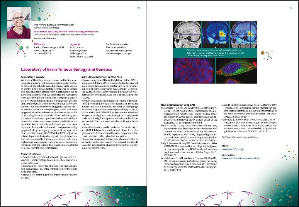 rapport activité présentation visuelle neurosciences édition